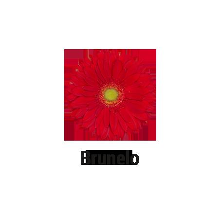 Brunelo