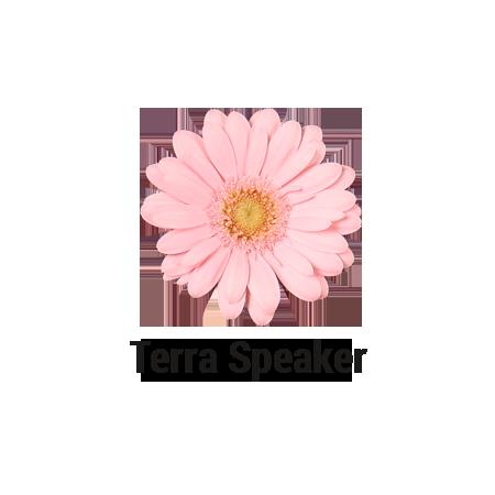 Terra Speaker